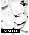 Witte rozenbladeren in een pakketje